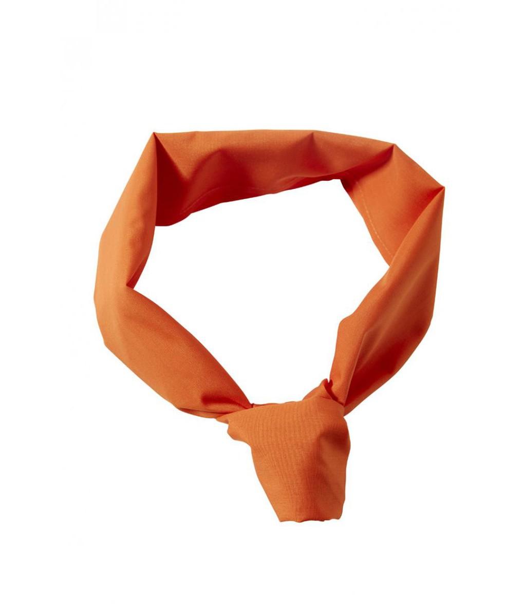 Neckerchief Colour Accessories 6