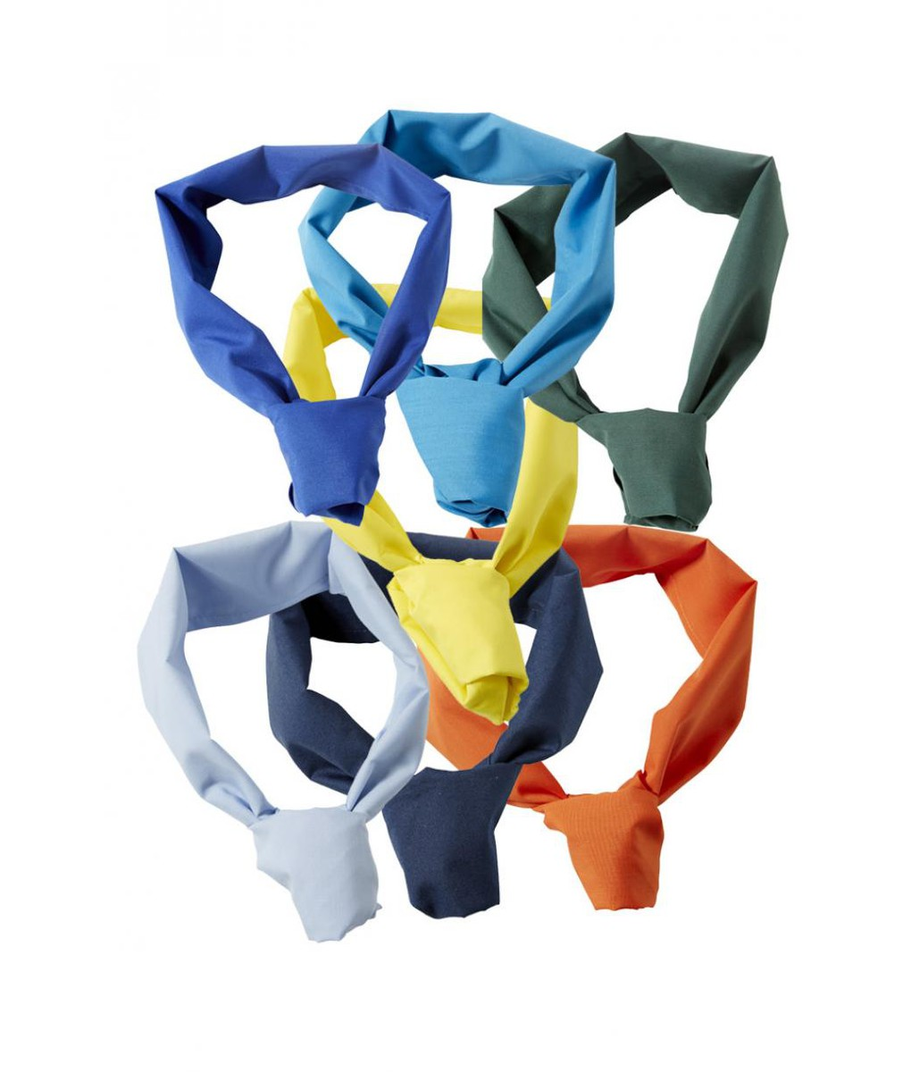 Neckerchief Colour